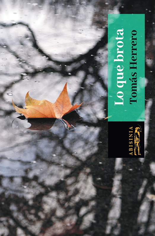 Abisinia-Review-Catálogo--Lo-que-brota--Tomás-Herrero-Tapa-2--Tienda-Comprar