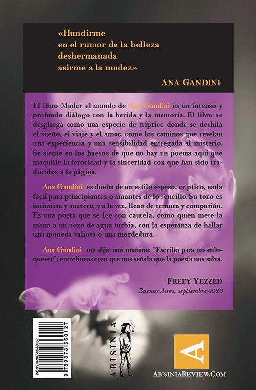 Abisinia-Review-Catálogo--Mudar-el-Mundo--Ana-Gandini--Contratapa--Tienda-Comprar