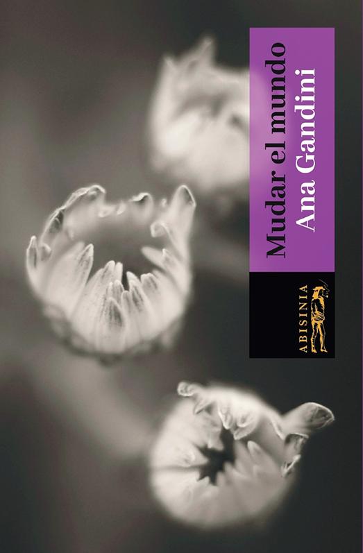 Abisinia-Review-Catálogo--Mudar-el-Mundo--Ana-Gandini--Tapa--Tienda-Comprar